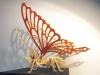 Veneer Butterfly 1A
