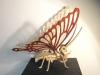 Veneer Butterfly 2